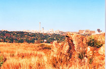 melville-koppies-view-of-jh